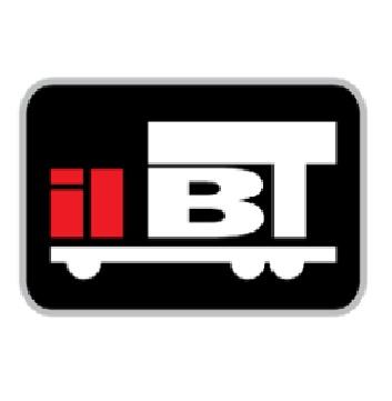 IIBT logo