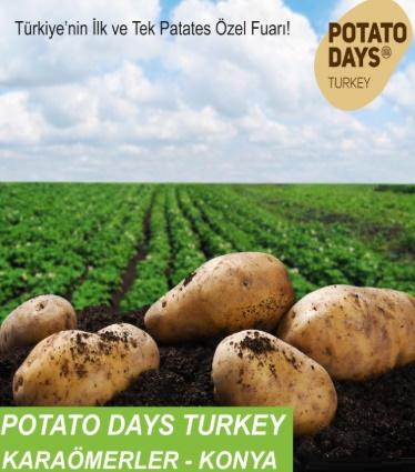 Patates Günleri Türkiye logo