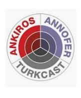 ANKIROS  logo